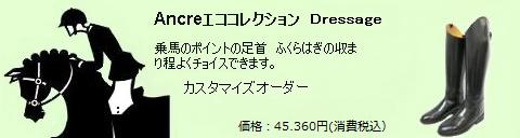 6echo256-04-16.png